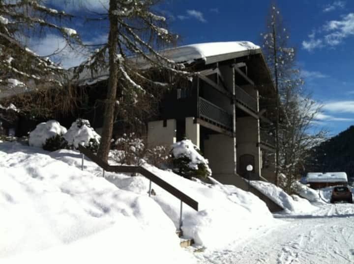 Appartement de vacances avec jardin à Morgins