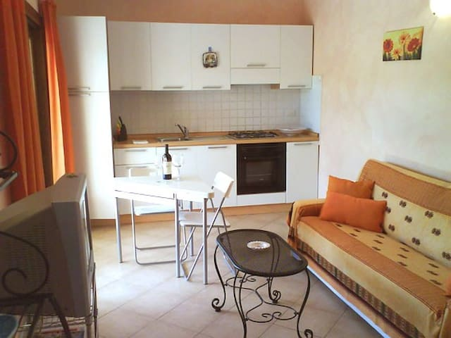 Nuovo Bilocale in piccolo complesso con terrazza - Murta Maria - Appartement