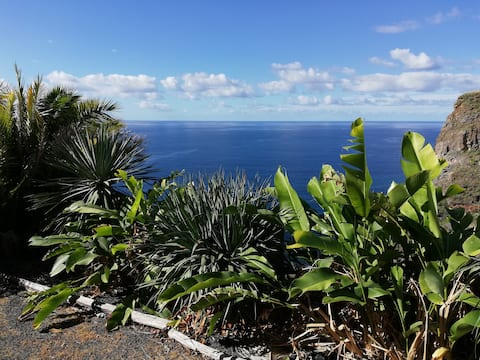 """Cabana Papaya"" South Coast, Madeira Island"