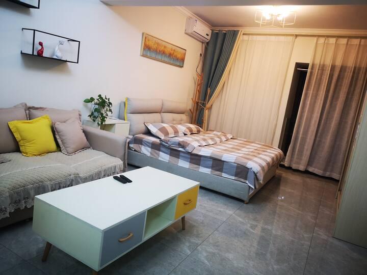 弄莫湖畔北欧简约风格一室一厅公寓