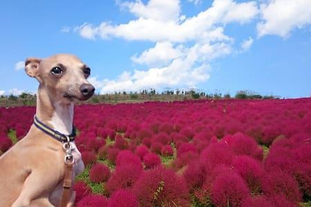 景観の良い駅近マンションで可愛い犬と過ごすスーパーまで徒歩1分 - Apartemen