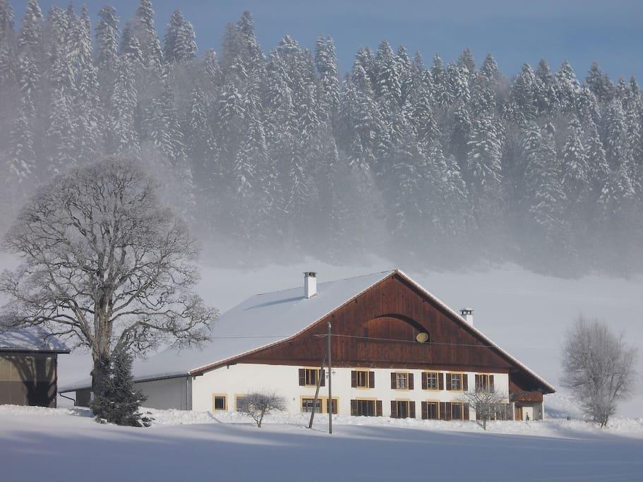 A proximité des pistes de ski nordique