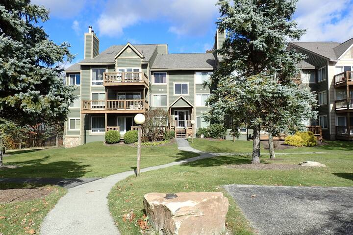 5313 summit, 2 bed, AC, ski in ski out, Sleeps 4