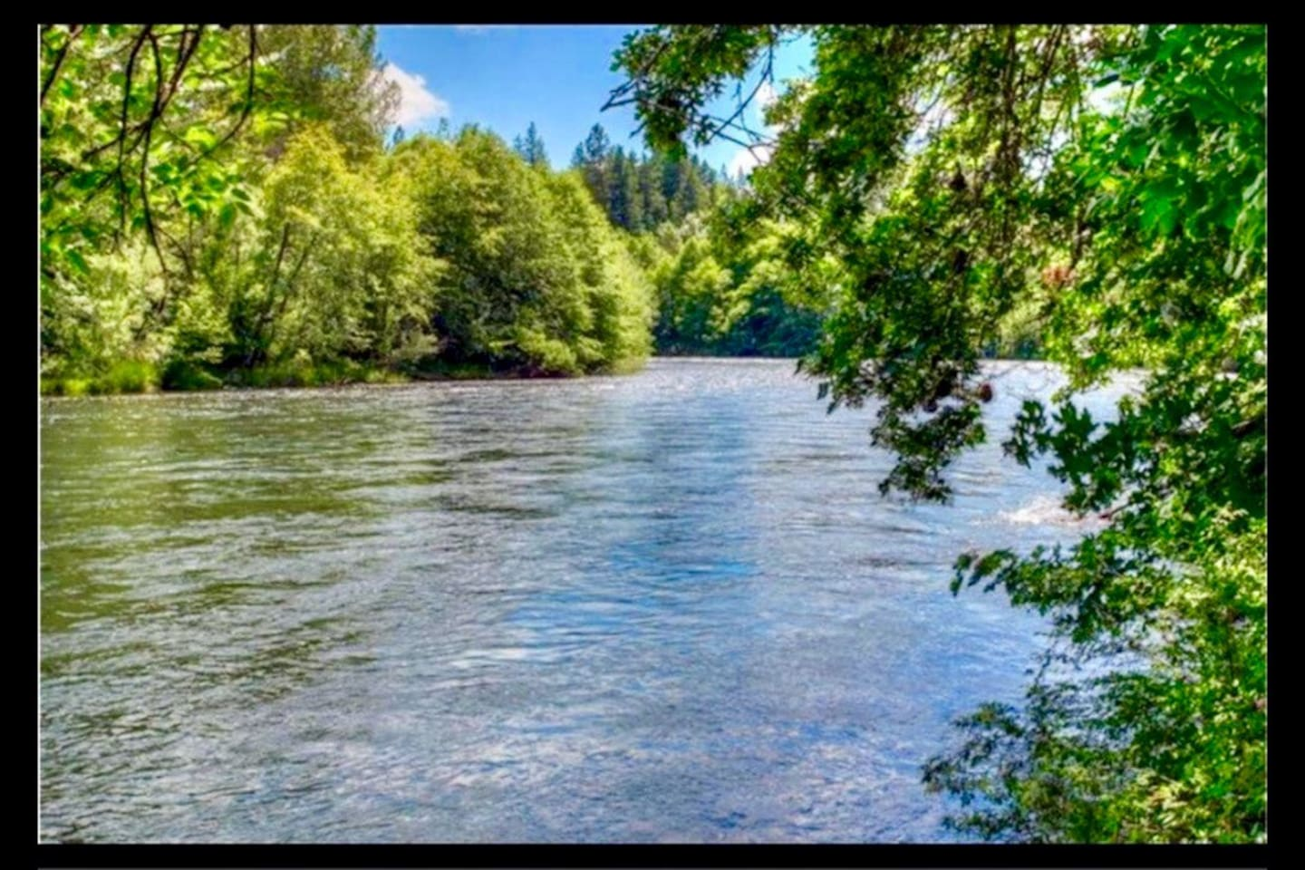 Picturesque isn't enough to describe the Rogue River this isn't a random shot, it's your down river view.