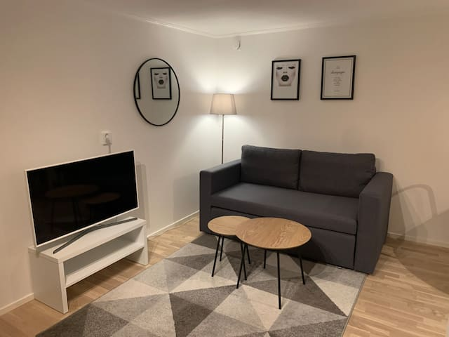Livingroom with sofa bed (140)