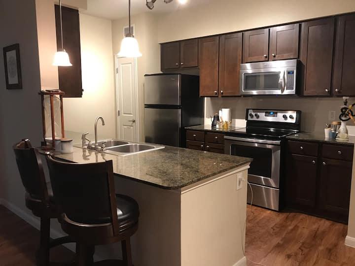 Entire cozy apartment in Aggieland!