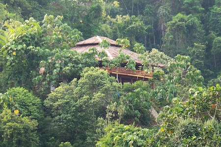 Bukit Lawang Hill Resort - Bohorok - 宾馆