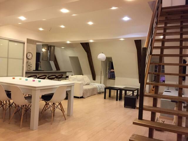 Charmant duplex de 140 m2 centre ville de Dôle