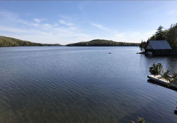 Paradise on Palmerston Lake