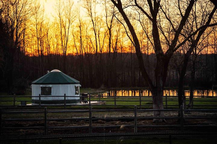 The Elmbrook Yurt, Rural Glamping