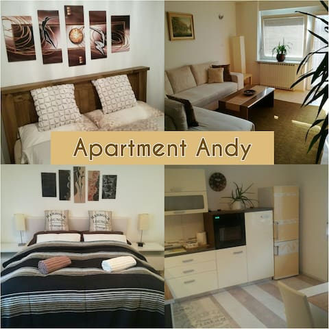 Big apartment with 4 rooms/6 person - Medvode - Leilighet