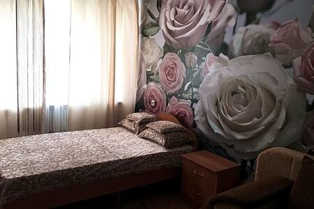 Красивая квартира (люкс) - Voronez - 公寓