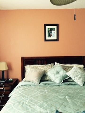 The guest room is beautifully furnished with a queen size bed and a Smart T.V.