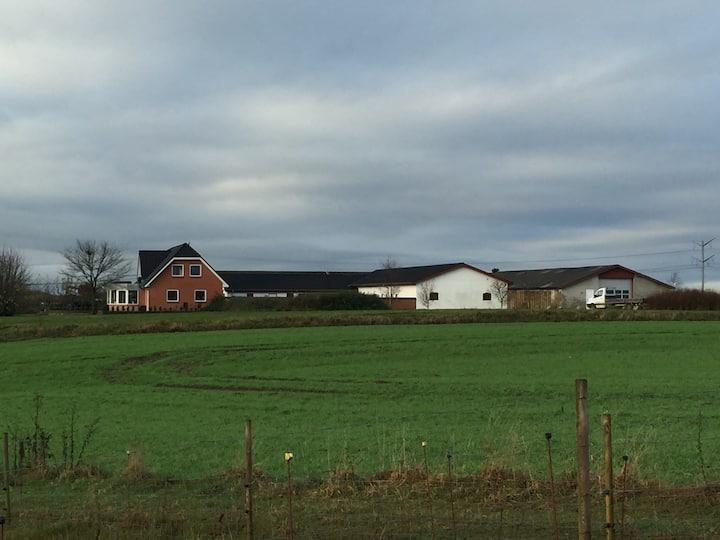 Engholm - bondegårdsferie i skønne omgivelser