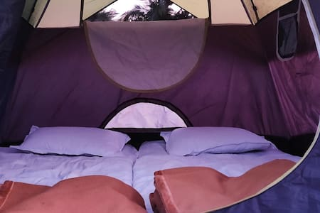 ARANYAGIRI COUNTRYSIDE RESORT - MACHAN TENTS