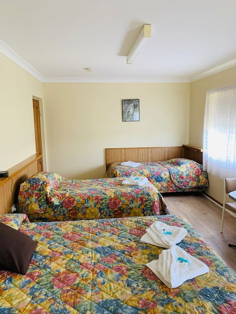 Tripple Single Room