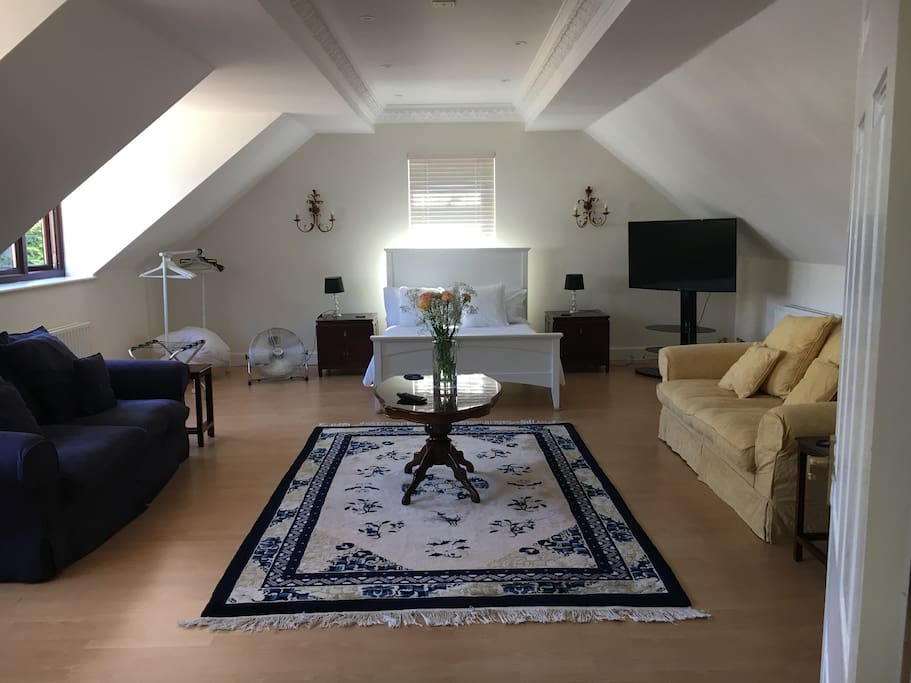 Large studio apartment. Lounge & kitchen overlooking gardens. All wood floors.  Natural light pours through the 4 windows, with a huge feeling of the space.