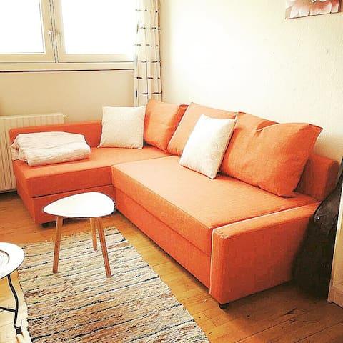 Room w. 2 prs Bed, netflix tv, desk - Brøndby