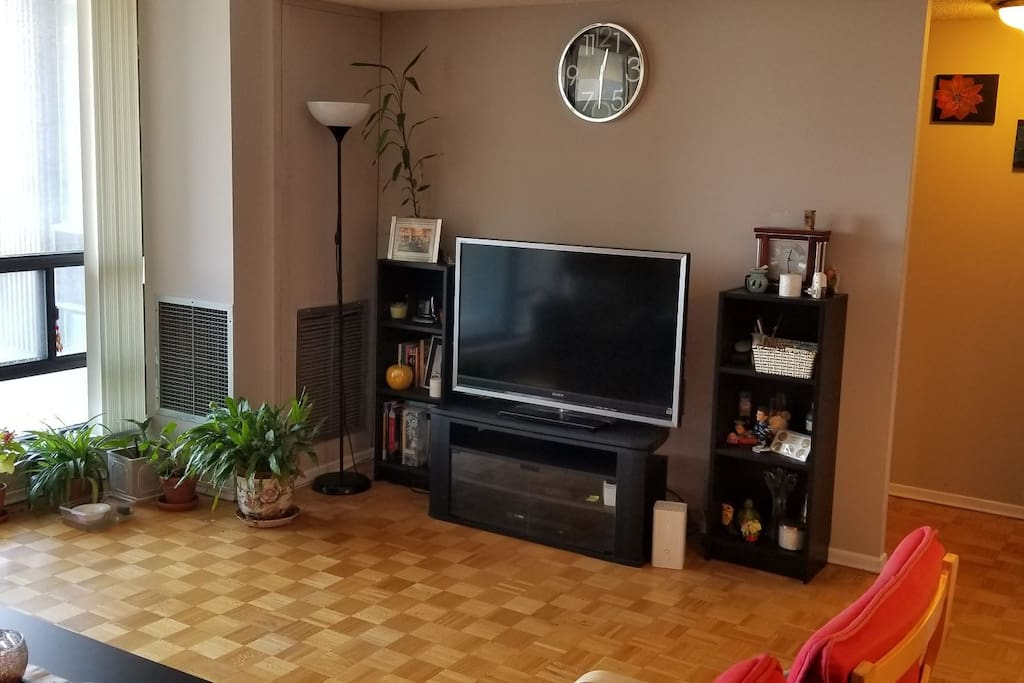 TV unit in Living Room