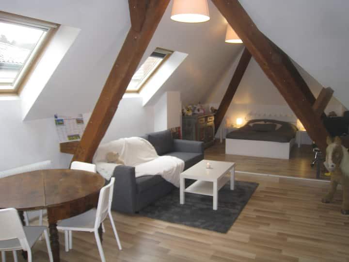 Appartement Studio 2 à 4 p 45 m2
