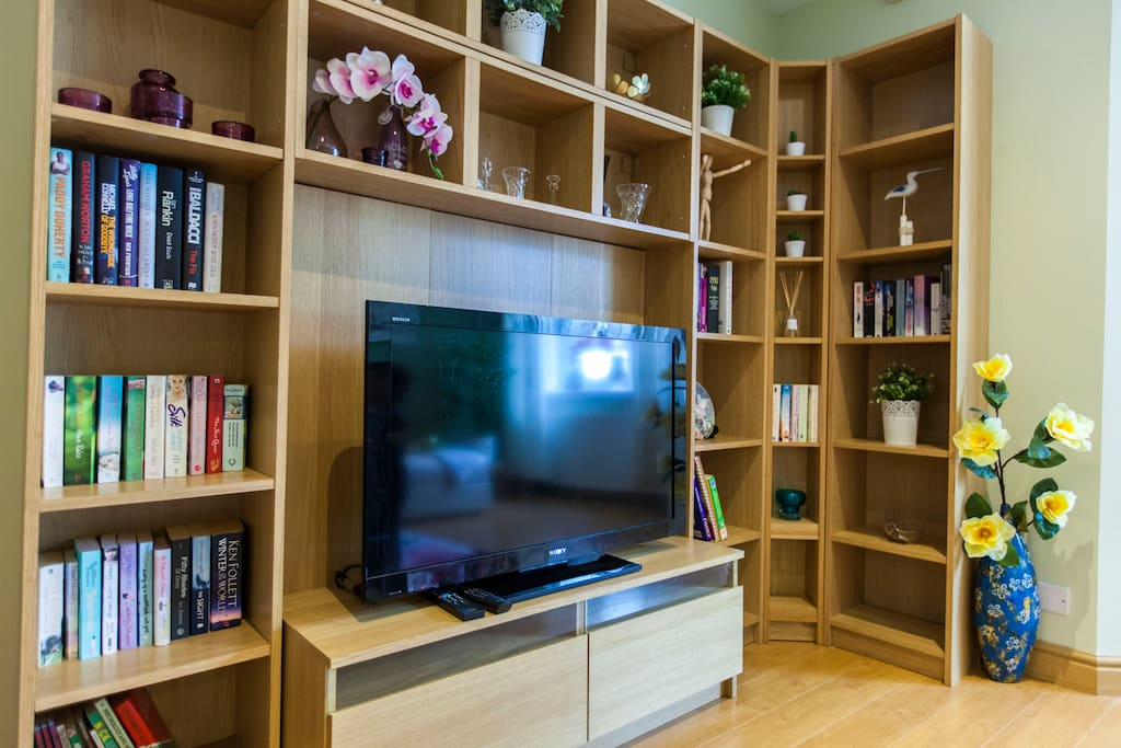 Living room with TV and book shelves