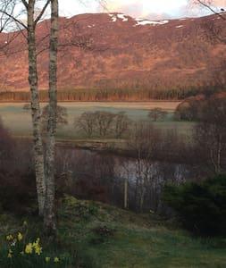 1 single room - Highland
