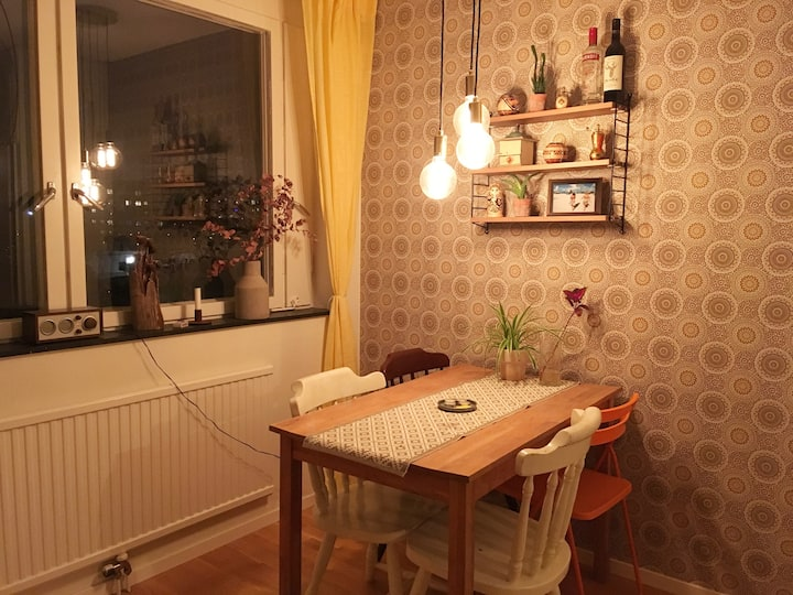 Cozy apartment close to the heart of Södermalm