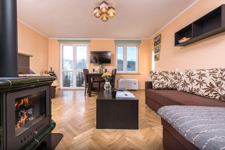 Szczawnica - Apartament z widokiem na Palenicę - Szczawnica - Byt