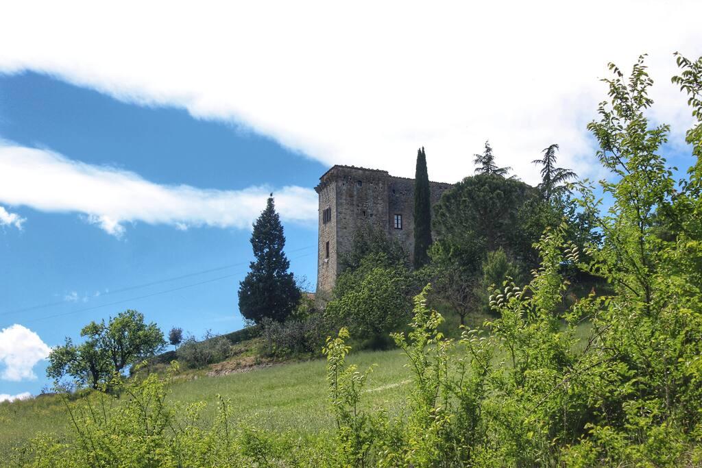 Il Castello visto dalla strada.