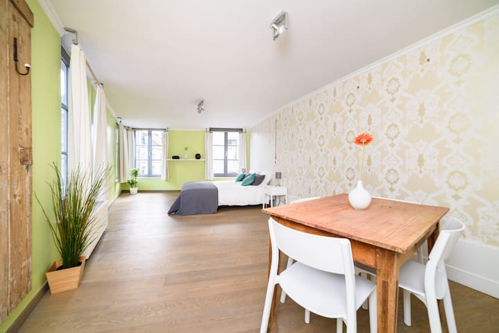 Sunny apartment in townhouse next to the park - Gent - Apartament
