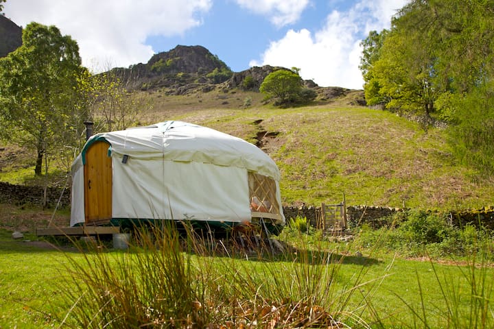 Inside Out Camping Yurts - Hollows Farm - Keswick - Iurta