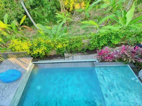 6 Pax ! Ubud Waterfall Area 2BR Prvte Pool Villa