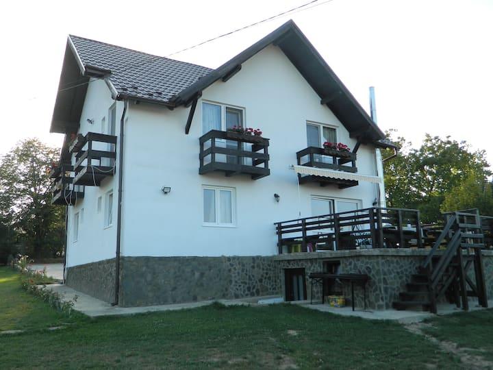 Elder Villa, 5 bedrooms holiday home in Bran