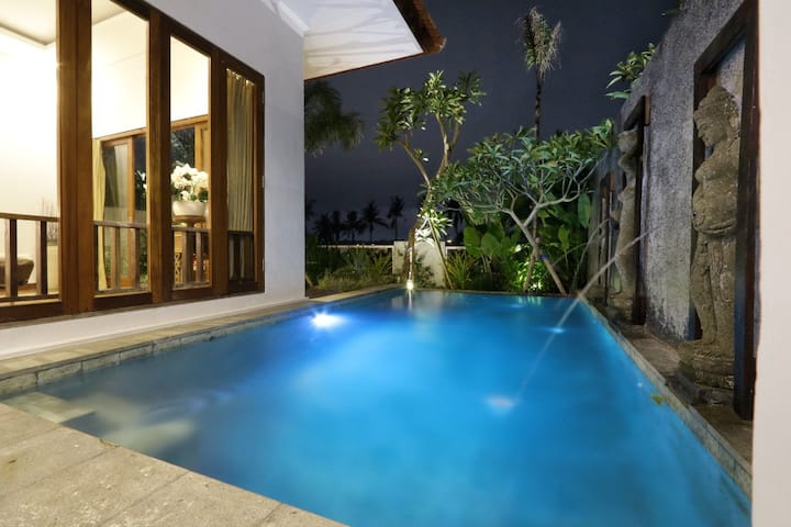 Ubud elegant private pool villa-quiet getaway