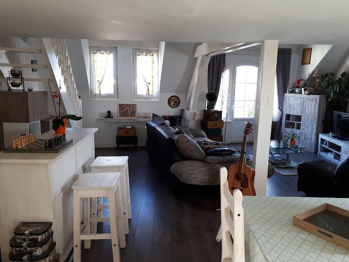 Loft/Appartement de charme centre ville IRON MAN