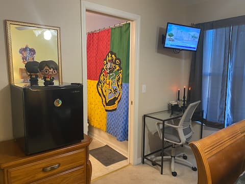Harry Potter Room - 15 minutes Disney
