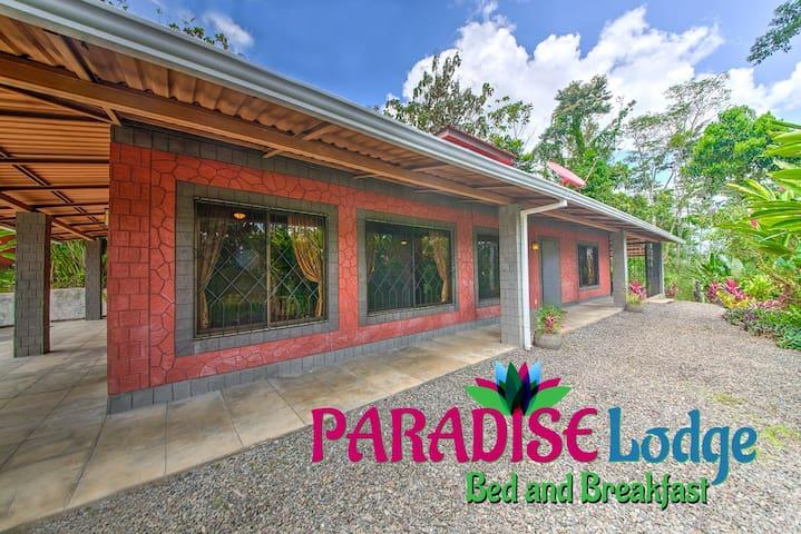 Your Paradise Lodge Awaits Near La Fortuna