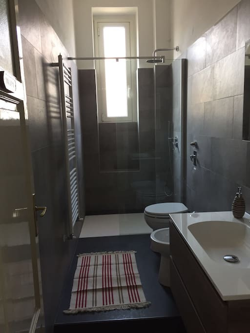 Toilet with walk-in shower