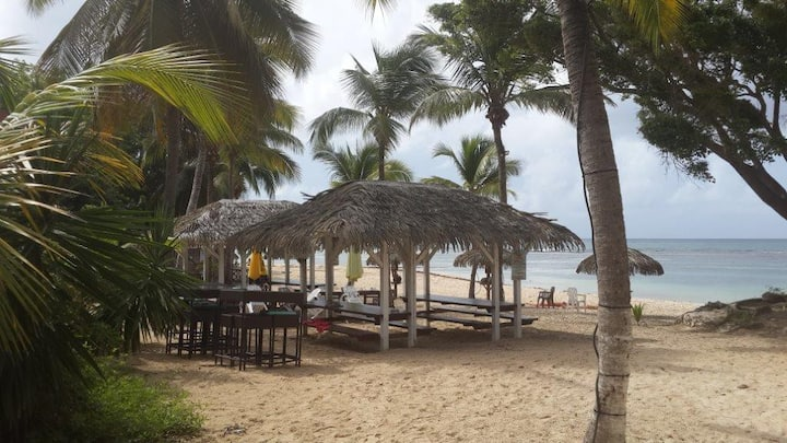 COCONUT LODGE, beach and swimming pool