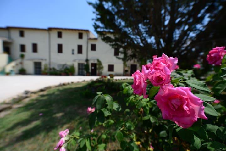 Nature and relax in Umbria - Bevagna - Lägenhet