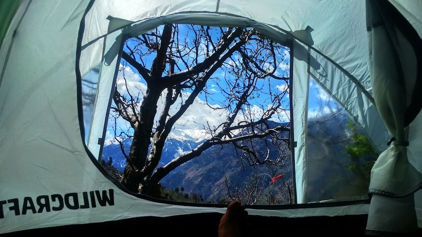 Apple Garden camping tent stay with amazing views.