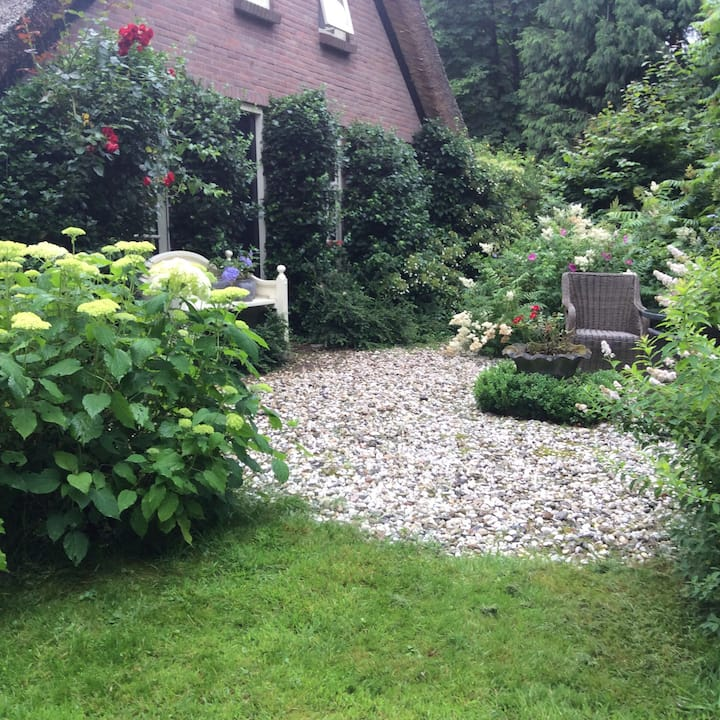 Charmante B&B in Drentse natuur