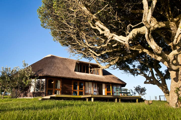 Ed's Place is nestled under the milkwood trees with views over the wild animals, the dune field, and the ocean.