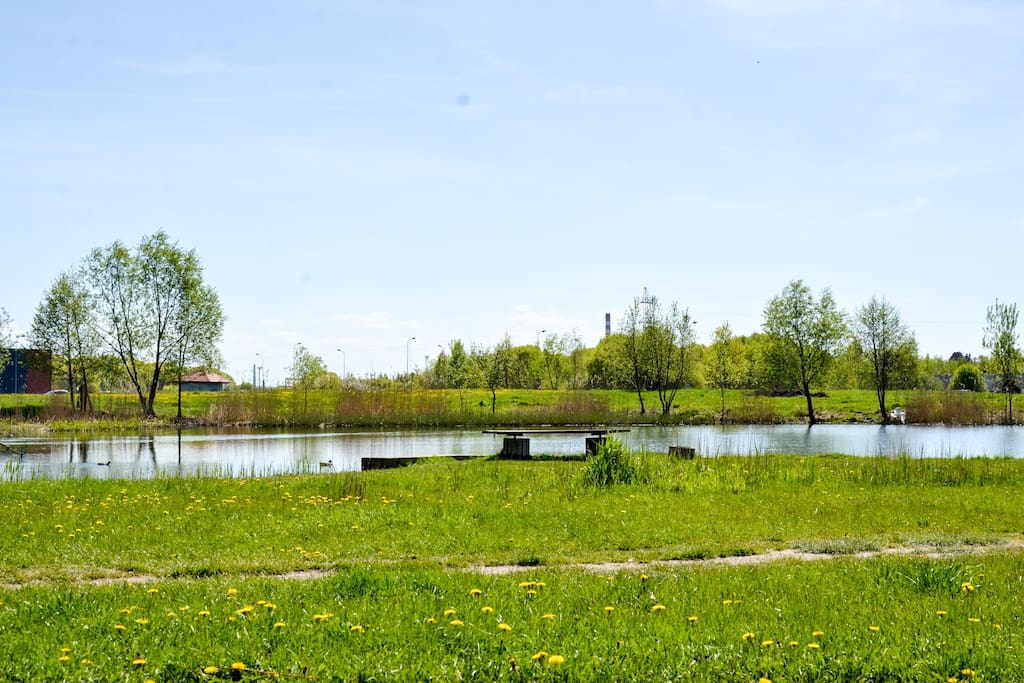 Pond nearby