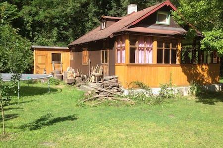 Romantická chata Slapy - Štěchovice - บ้าน