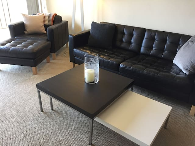 Monthly Furnished 2 BR 2 BA Penthouse near Capitol