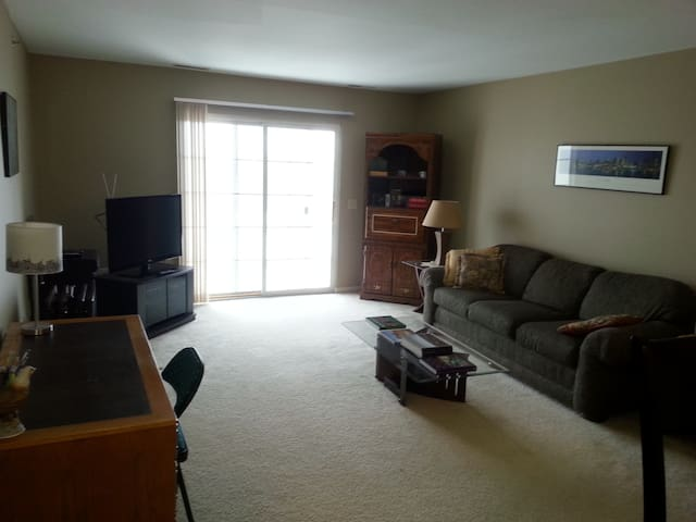 Clean, bright, 3rd floor condo - Fenton