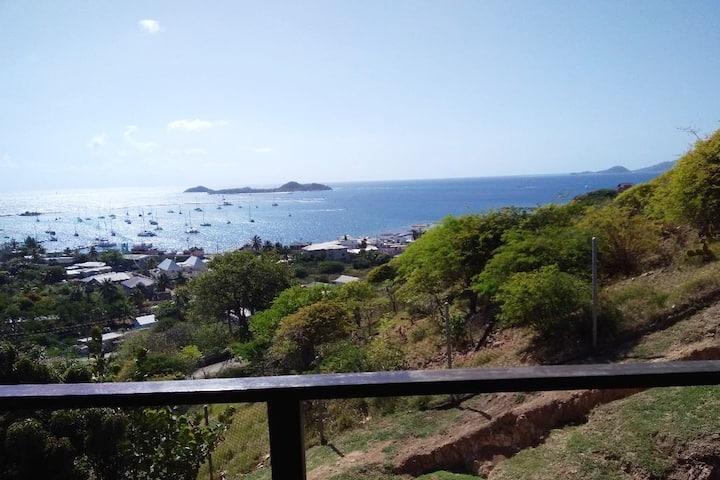 Grenadines for ever !