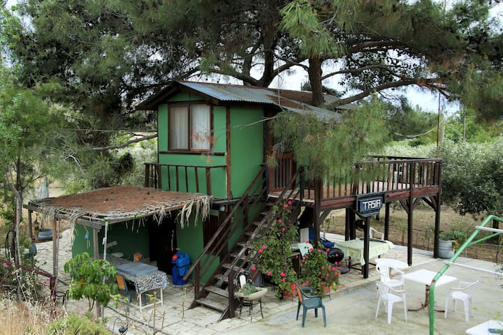 Tasias Tree House - Larnaca - Huis