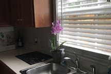 Kitchen has beautiful natural sunlight! Great place to enjoy breakfast or a coffee.